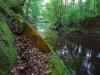 river-bank_web