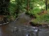 valley-stream_web